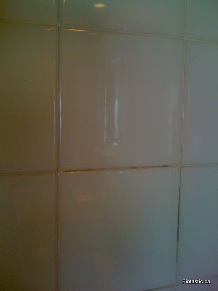 bathroom-grout-before2