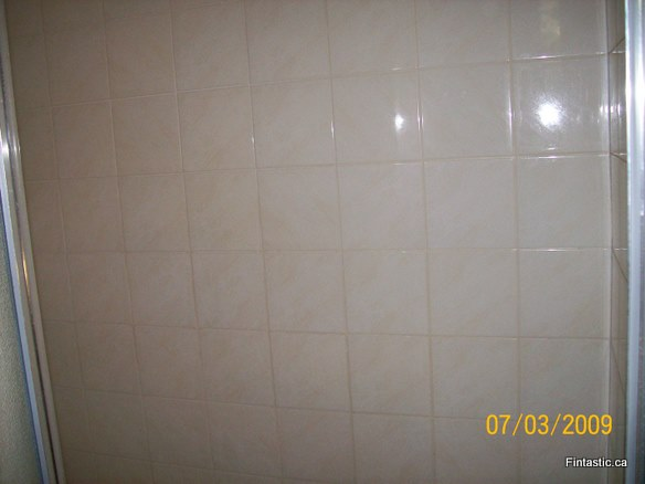 moldy-shower-tile after-3